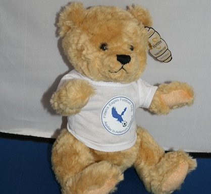 Flitwick Eagles Teddy Bear